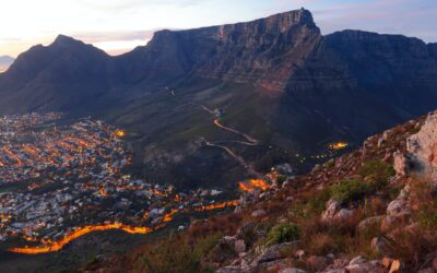 The Apprentice – Week One – Managing Expectations in South Africa